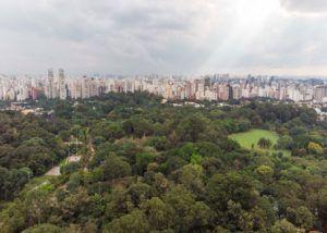 Ibirapuera São Paulo
