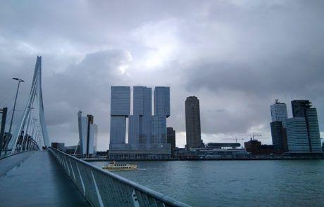 Rotterdam muelles