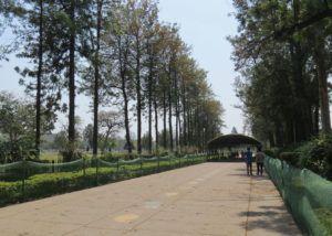 Chandigarh centro ciudad
